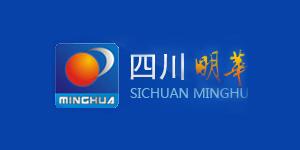 四川明华建设项目管理有限责任公司